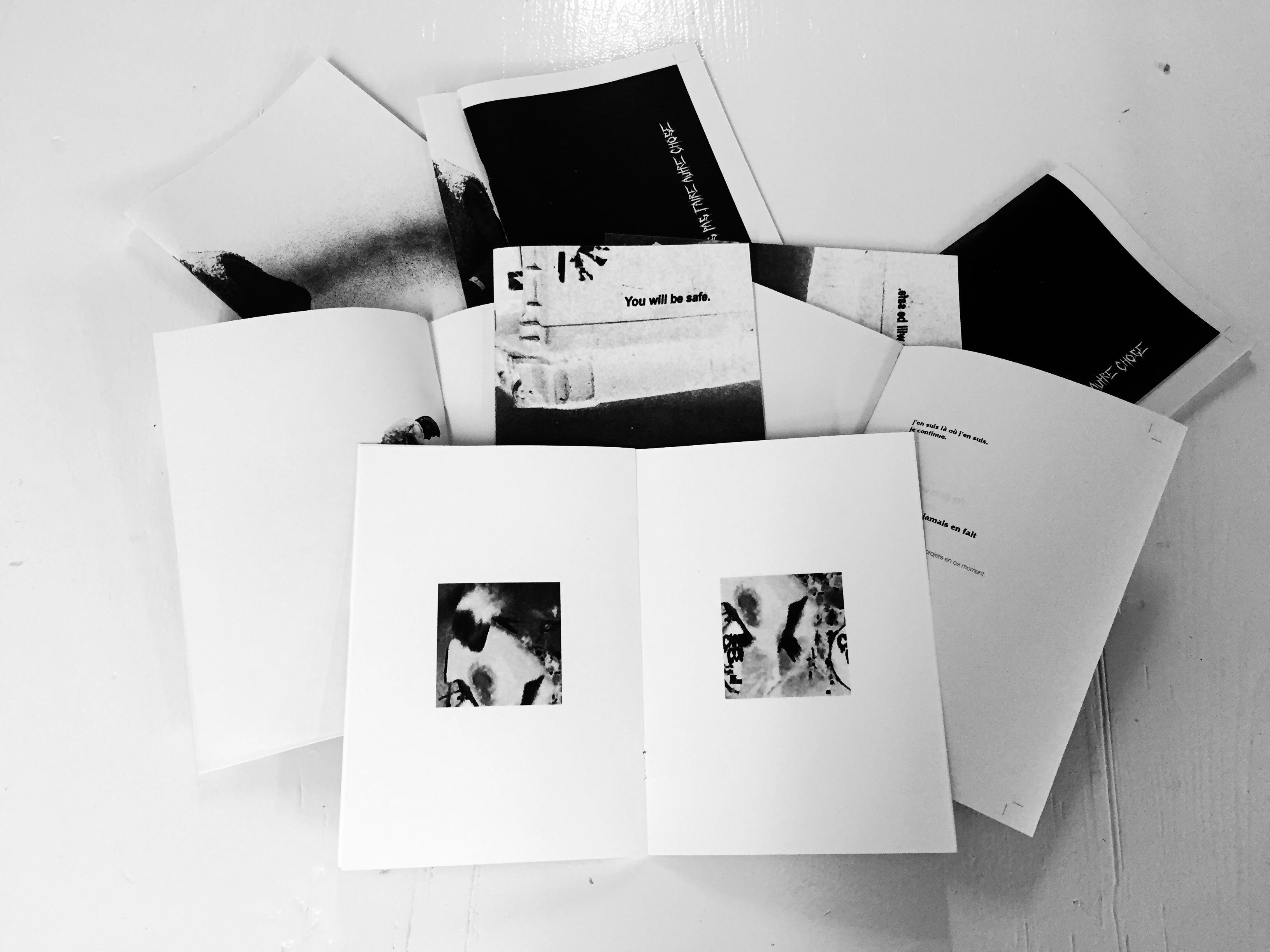 Editions de fanzines